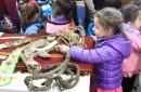 Jardín Infantil Cupulhueche asiste a la muestra museológica de la Biblioteca Municipal de Pucón