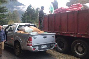 Unidad de Desarrollo Rural de Pucón hizo entrega de compra asociativa de cereales