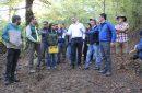 Tribunal Ambiental de Valdivia inspeccionó predio particular en Pucón en demanda por presunto daño ambiental