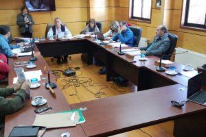 Concejo Municipal de Pucón manifestó público rechazo a proyecto hidroeléctrico en Llancalil
