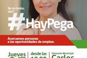 Municipio de Pucón invita a participar en Primera Feria Laboral de Trabajo