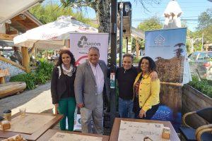 Municipio y Agrupación Pucón Verde instalarán colilleros en puntos estratégicos